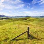 問題となる【耕作放棄地】その再生対策は太陽光発電が一役買う!